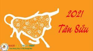 Xem tử vi 2021 của 12 con giáp cho bạn biết điều gì?